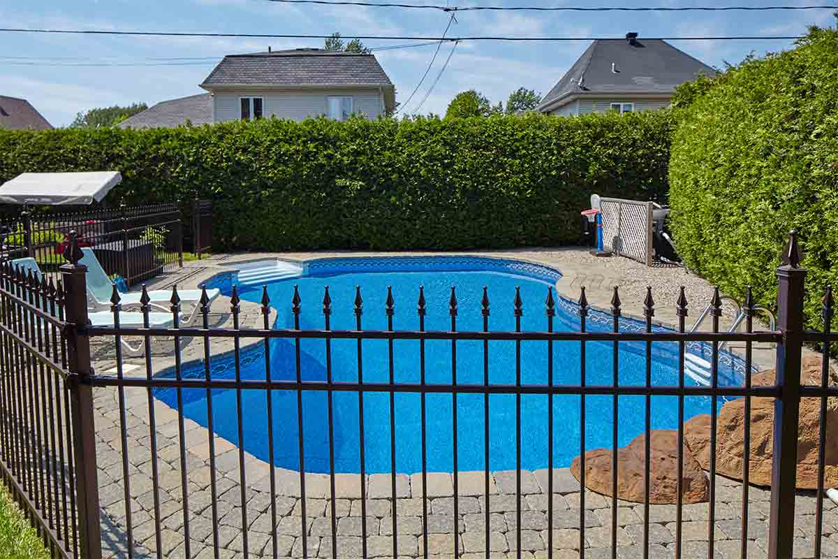 Backyard pool surrounded by black metal fence