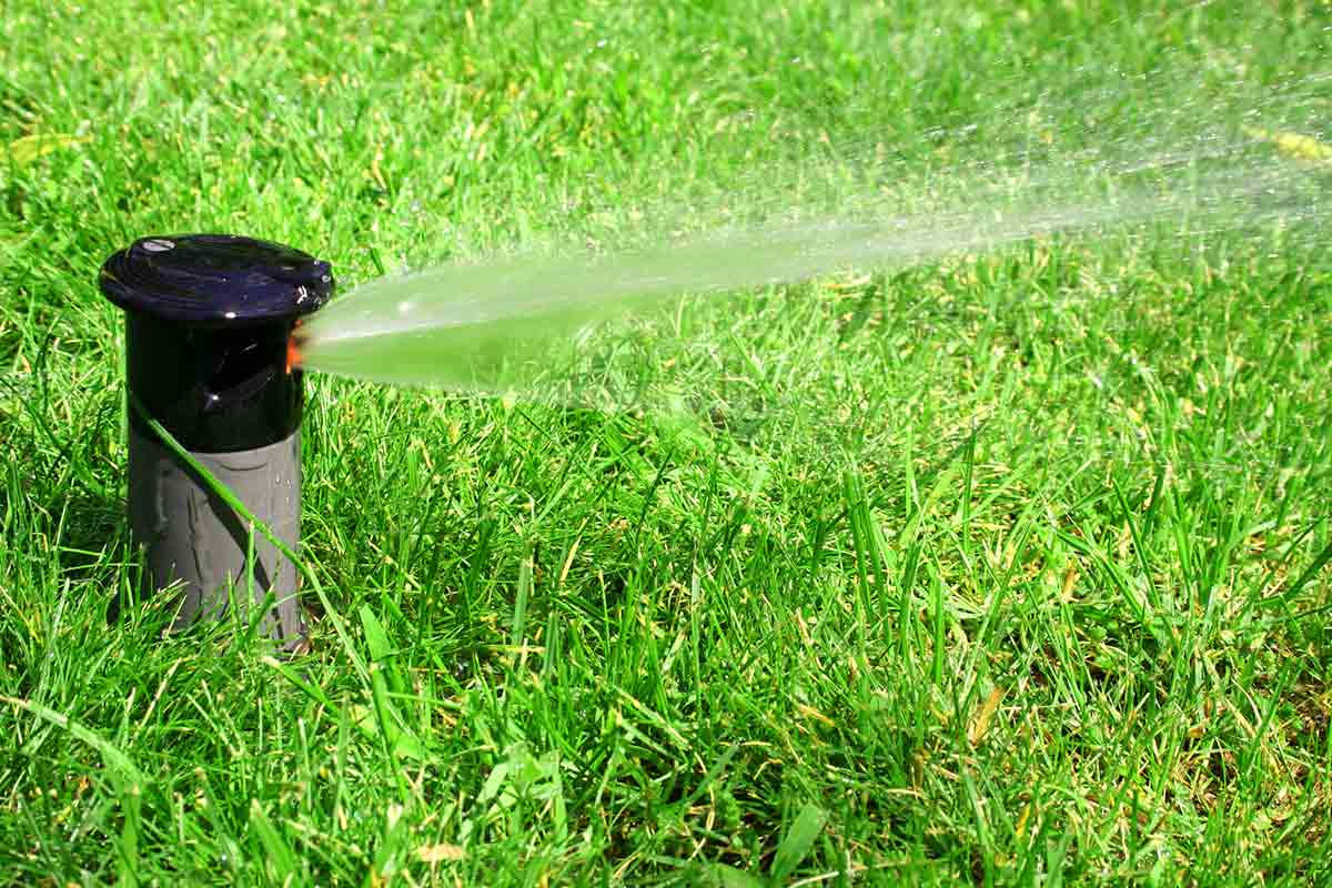 Close-up image of a lawn sprinkler head spraying water on green grass