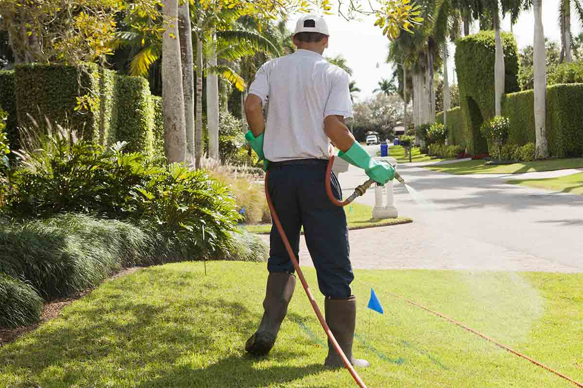 pest-control-technician-spraying-lawn-for-mosquito-control