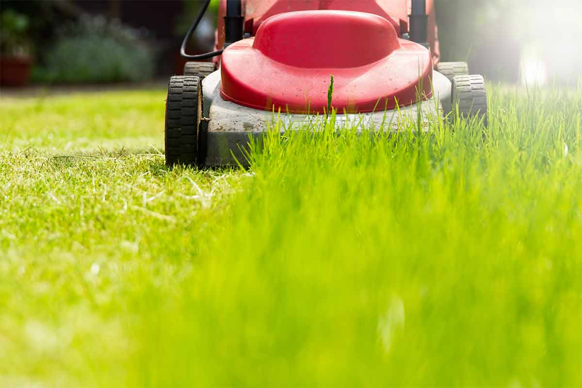 Red-lawn-mower-cutting-green-grass