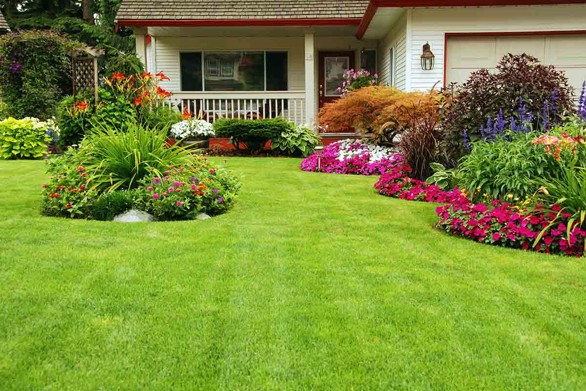 landscaped yard with colorful planting beds