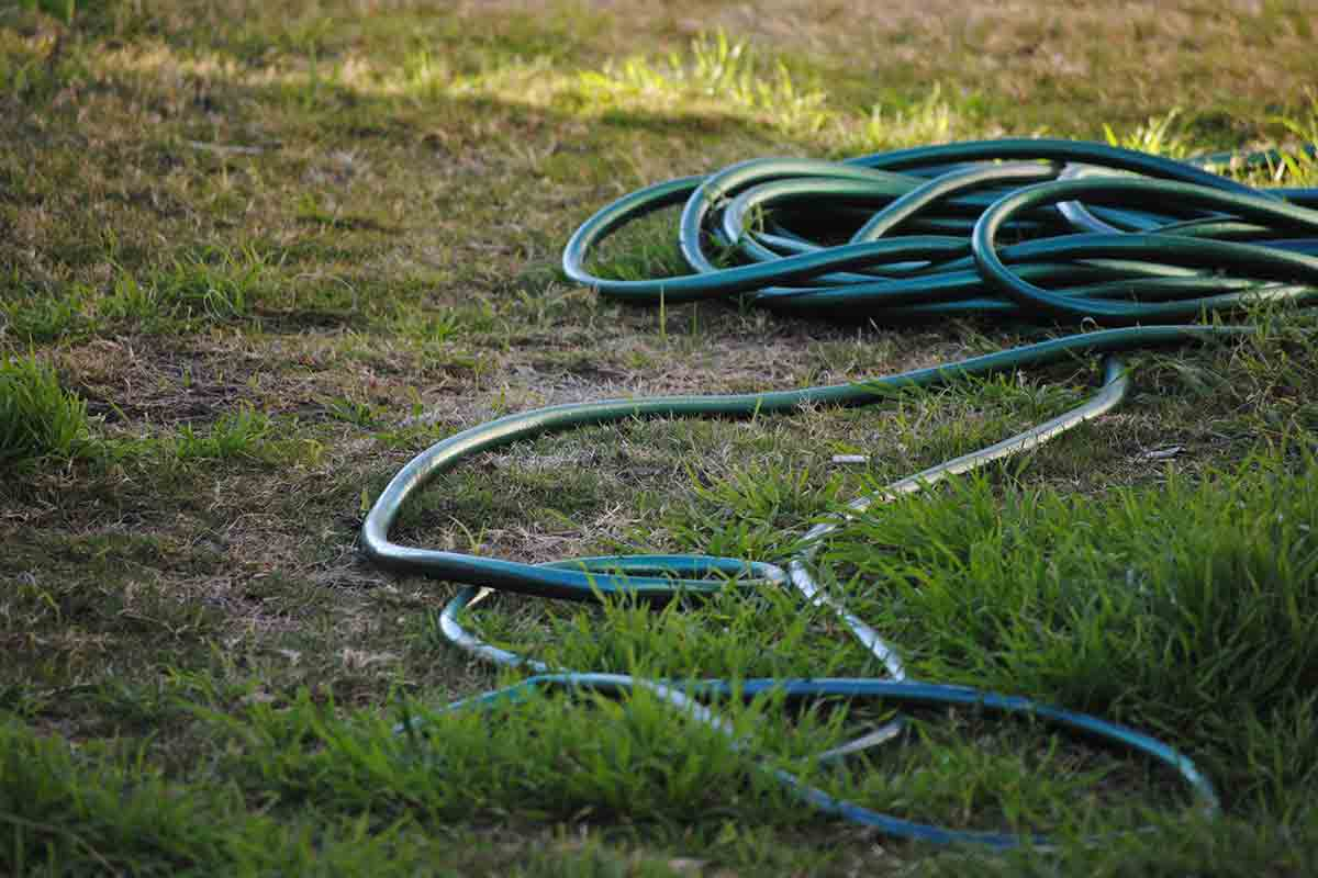 garden hose coiled on ground