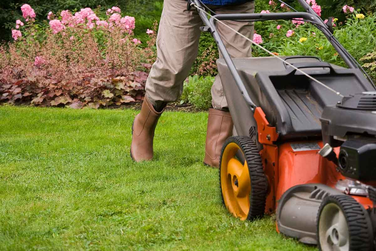 homeowner mowing a landscaped lawn