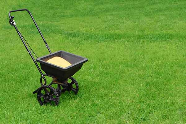 lawn fertilizer spreader on green lawn