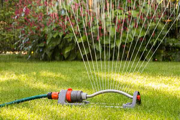 portable lawn sprinkler on green grass