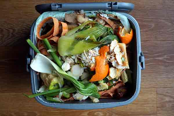 trash can full of food waste