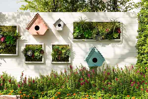 birdhouses and vertical wall gardens