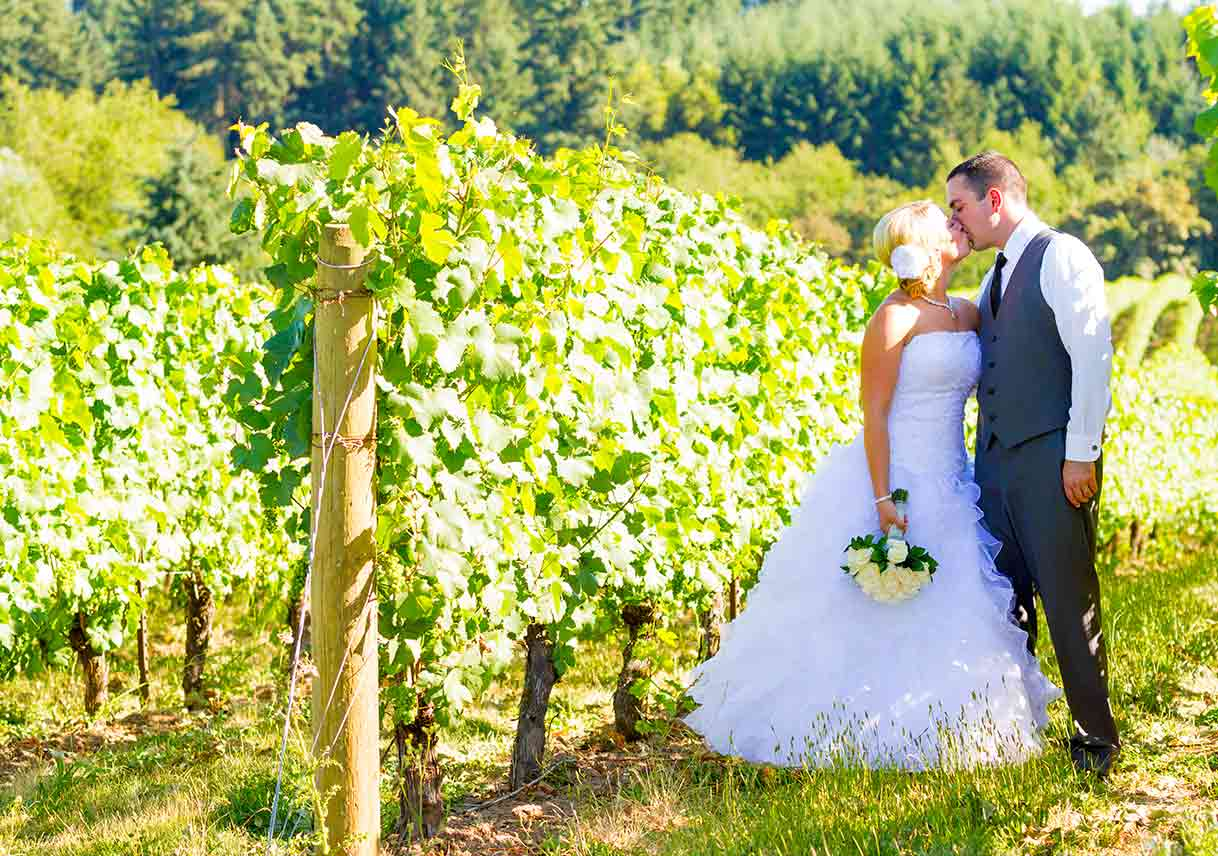 bride and groom kiss in vineyard