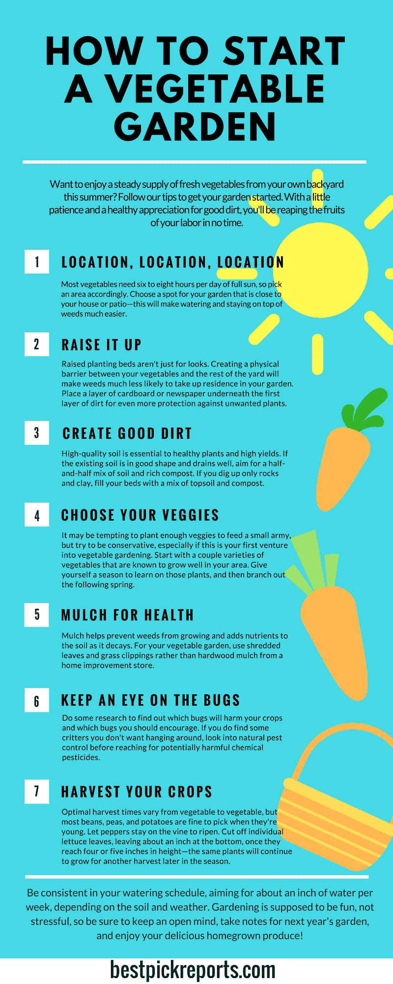 how to start a vegetable garden infographic