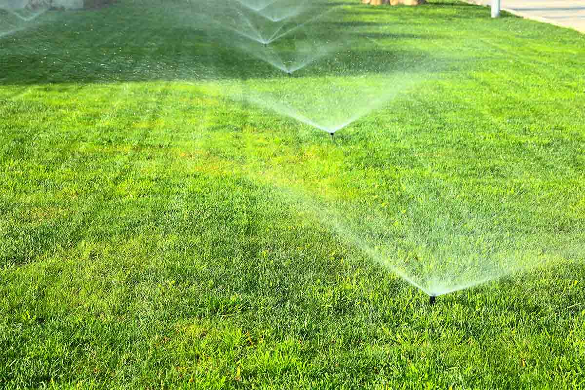 multiple sprinklers watering a lawn