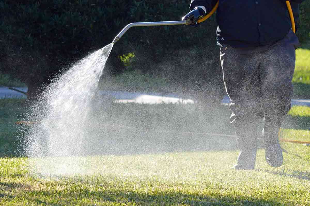 Man spraying liquid fertilizer on lawn