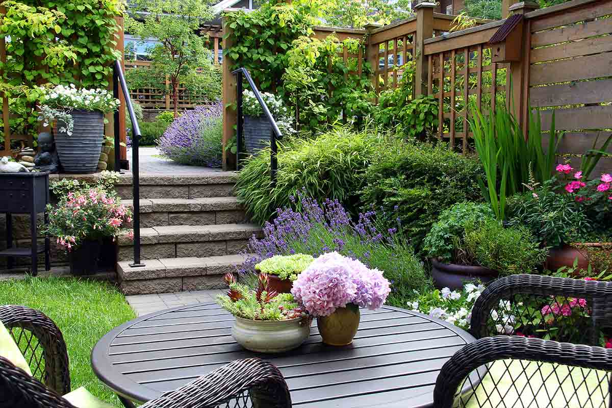 Backyard patio with potted plants