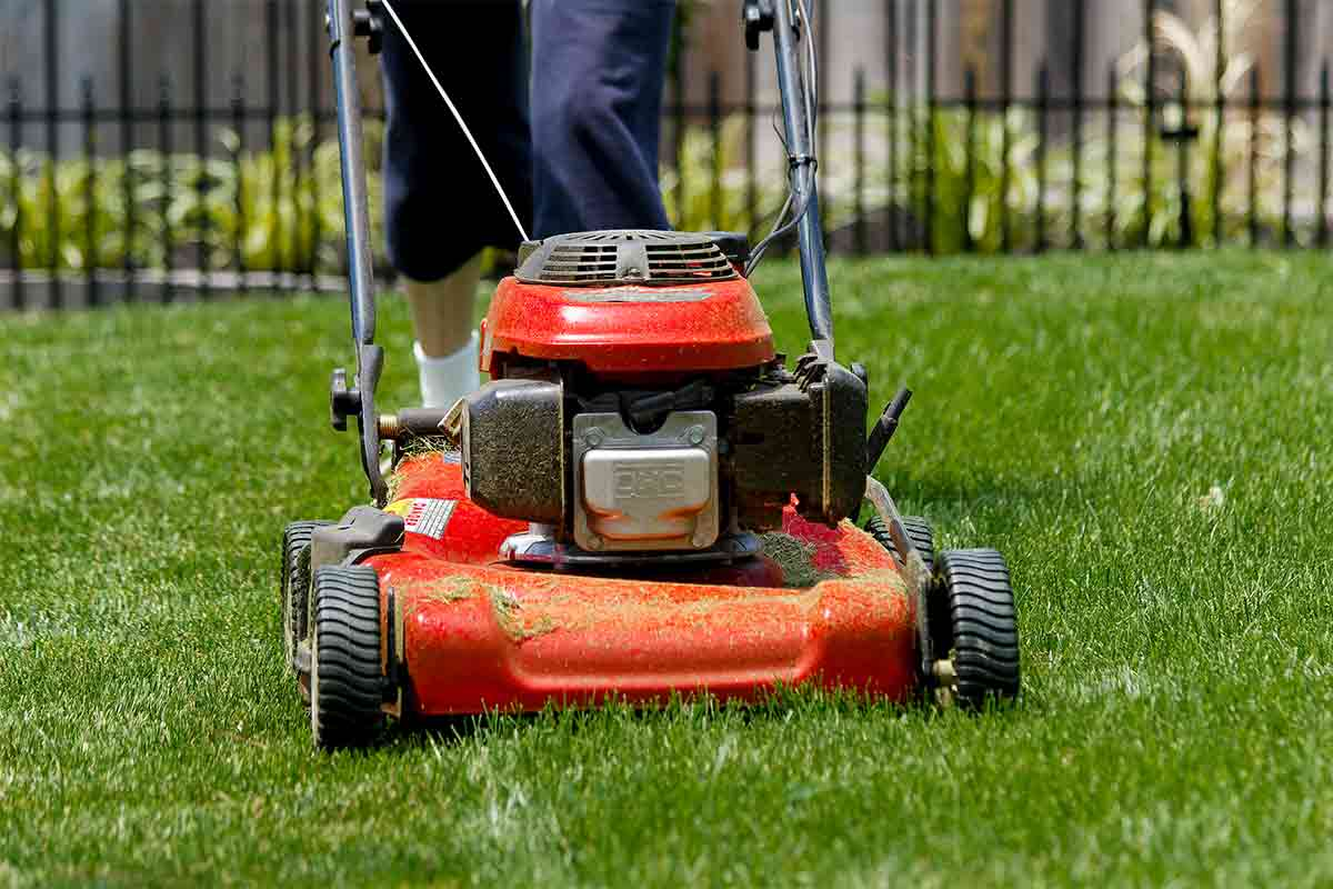 person walking behind lawn mower