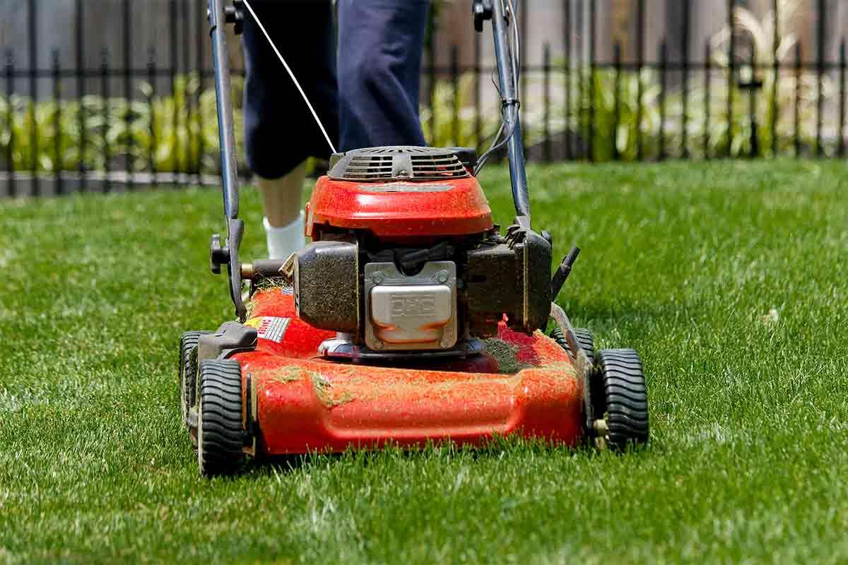 person walking behind lawn mower