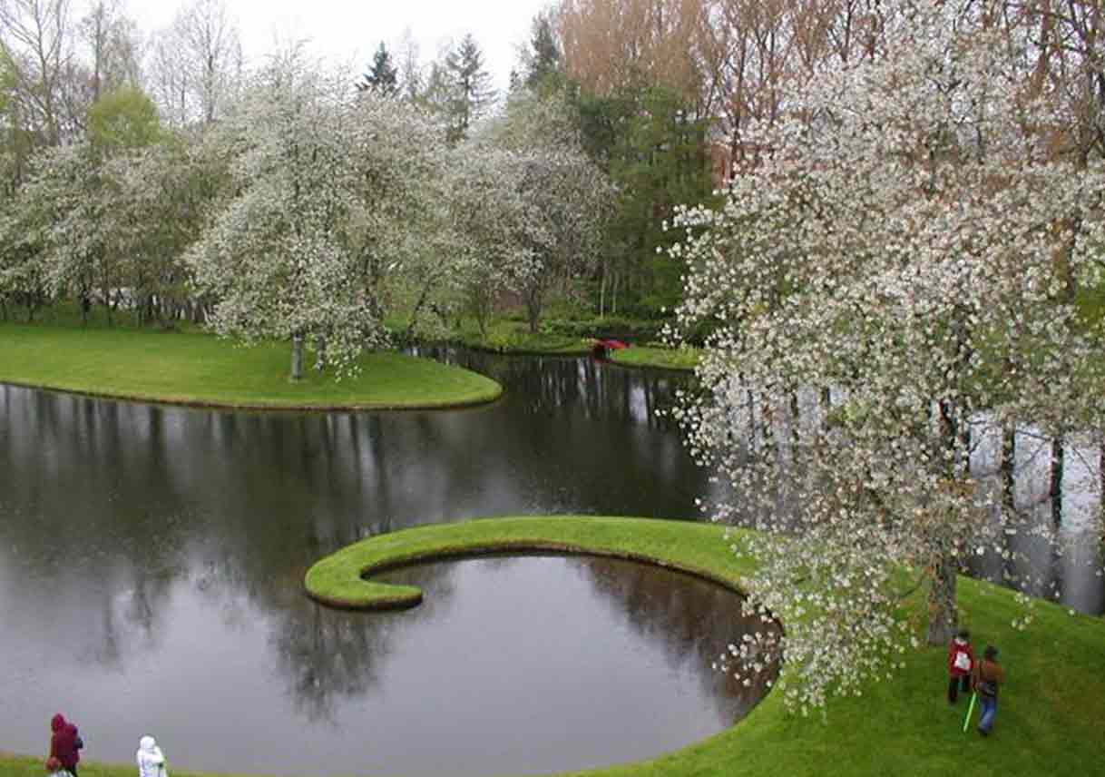 pond and flowering trees