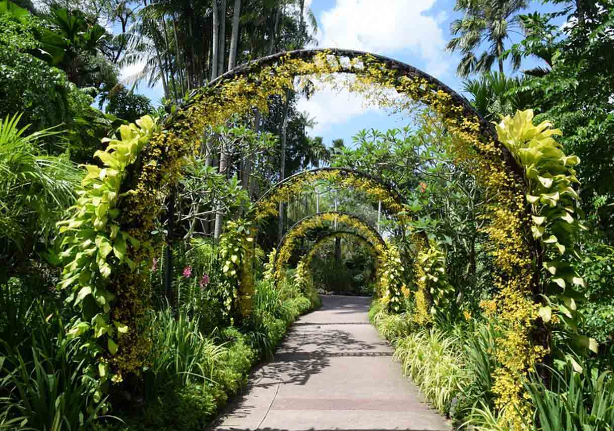 walkway with plant-covered arches