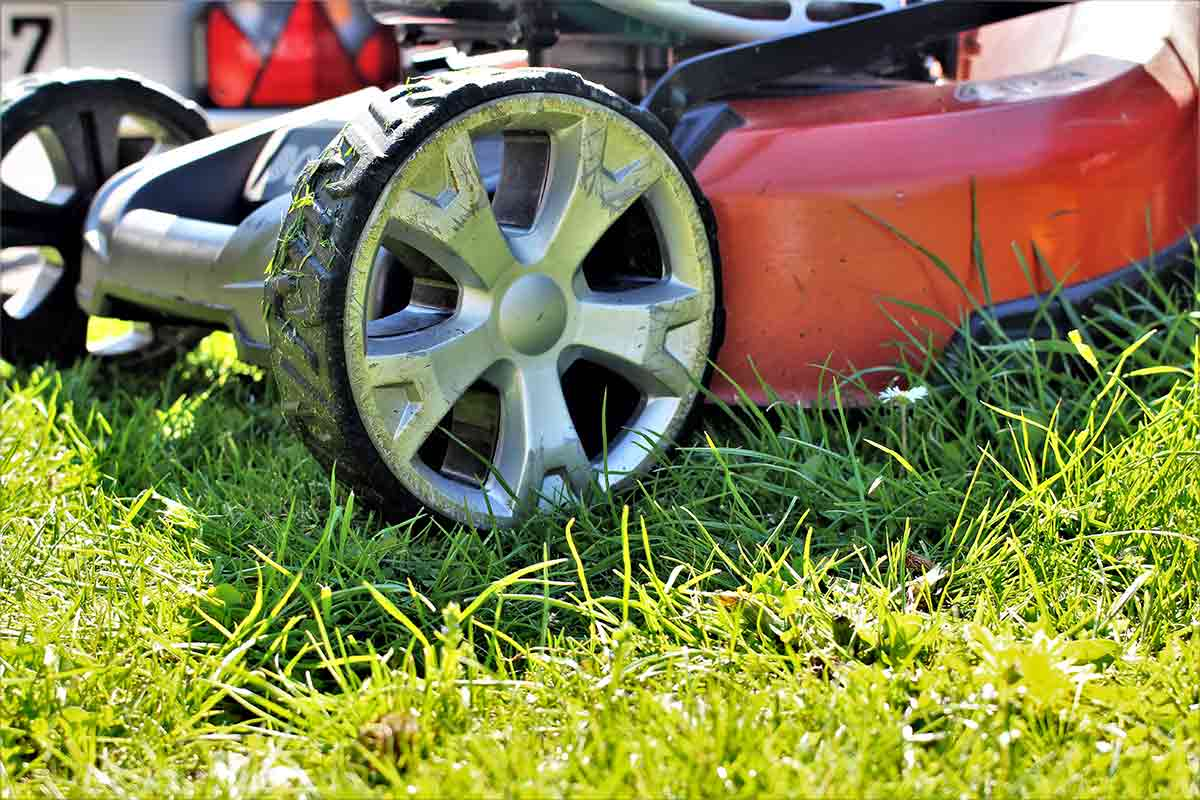 Close-up image of lawn mower in grass