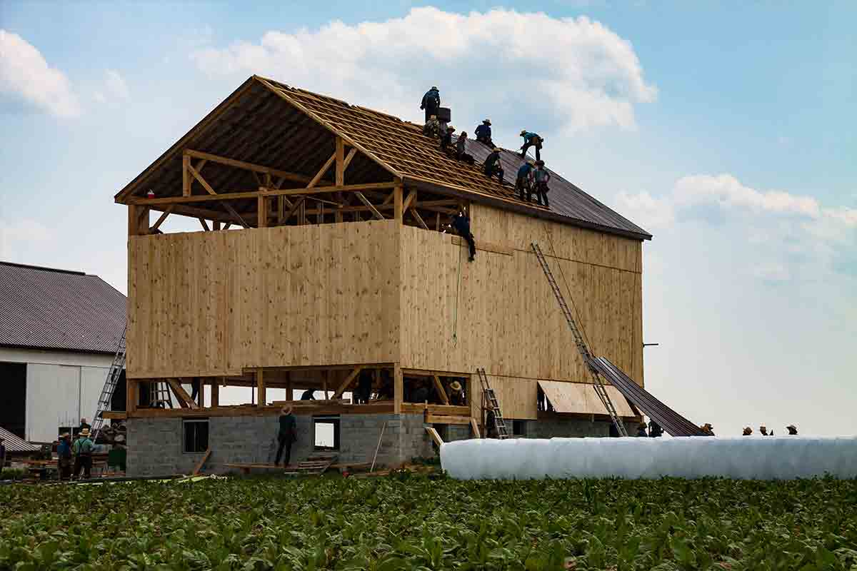 workers building a barn