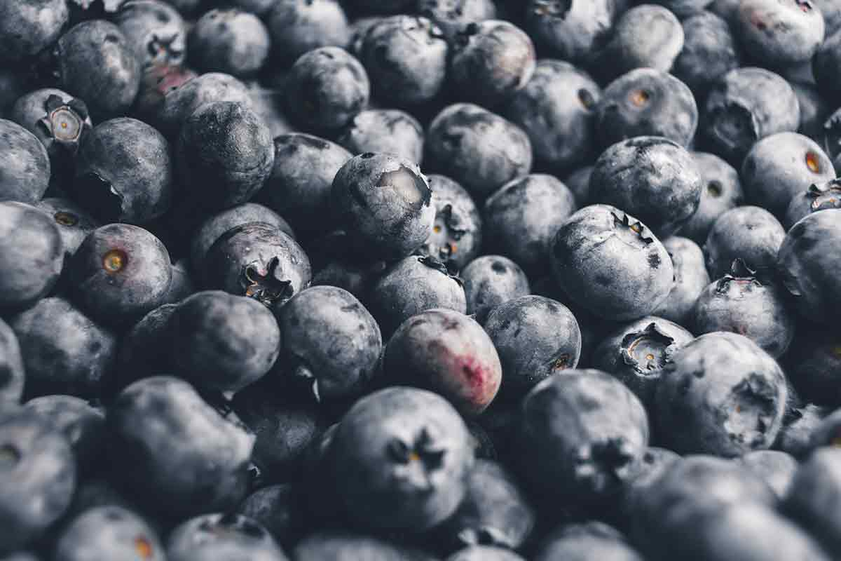 Photo filled with blueberries
