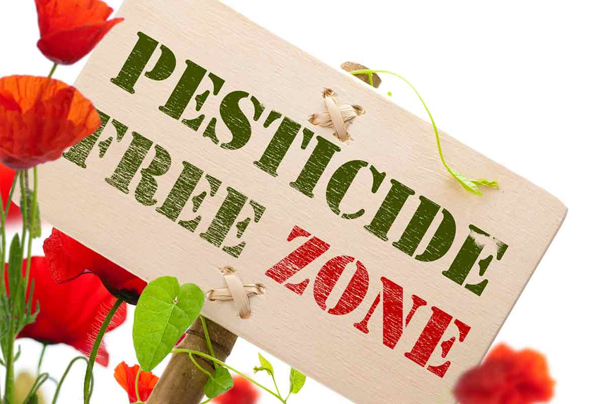 Pesticide free zone sign with flowers