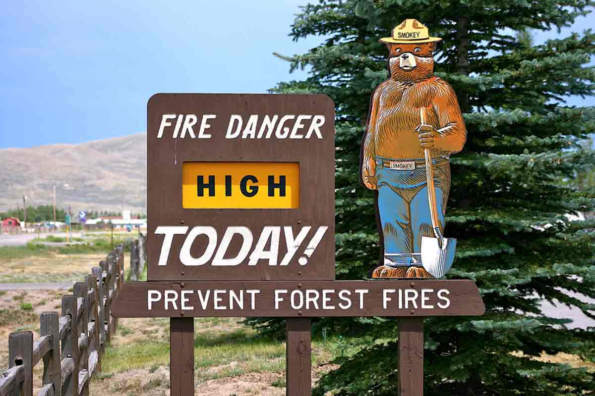 Smokey the Bear with fire risk sign
