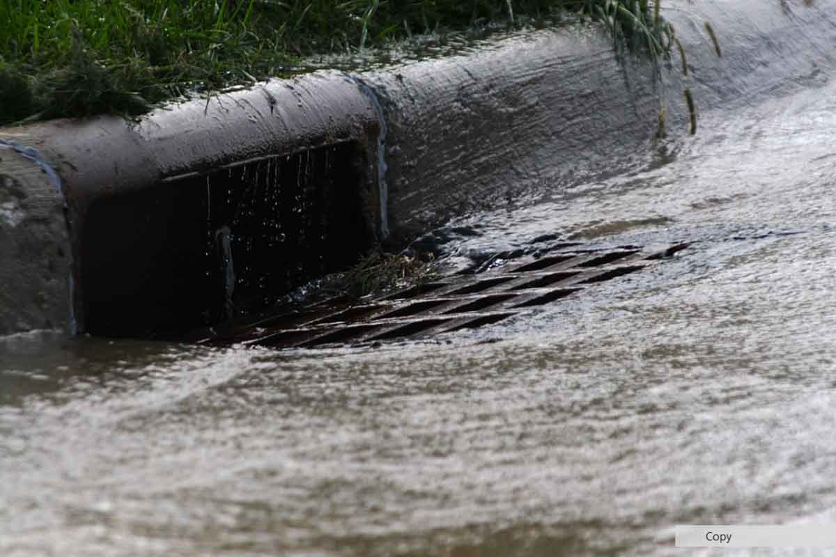 rainwater draining into residential storm drain