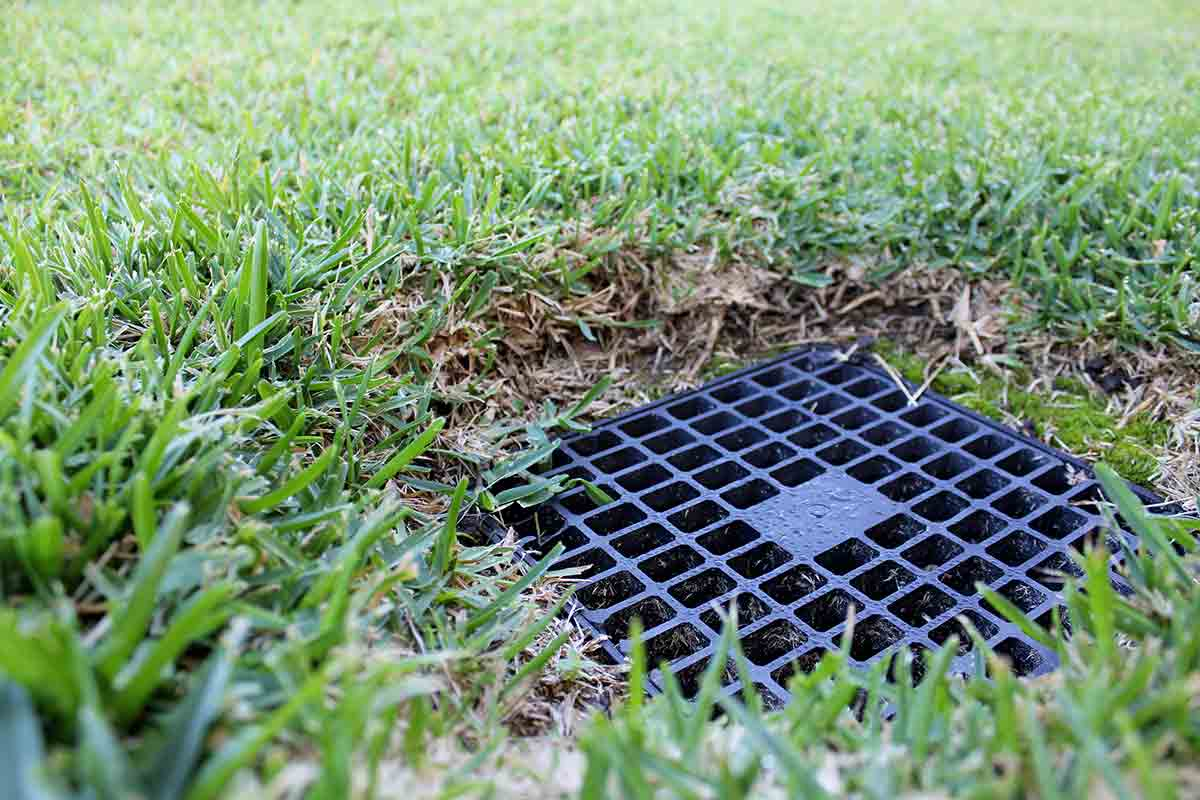 Solve Your Lawn Drainage Problems with These Systems | Best