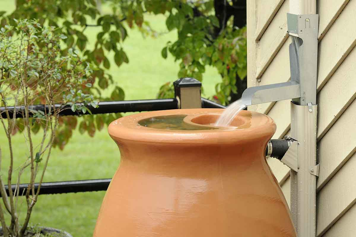 rain barrel being filled during storm