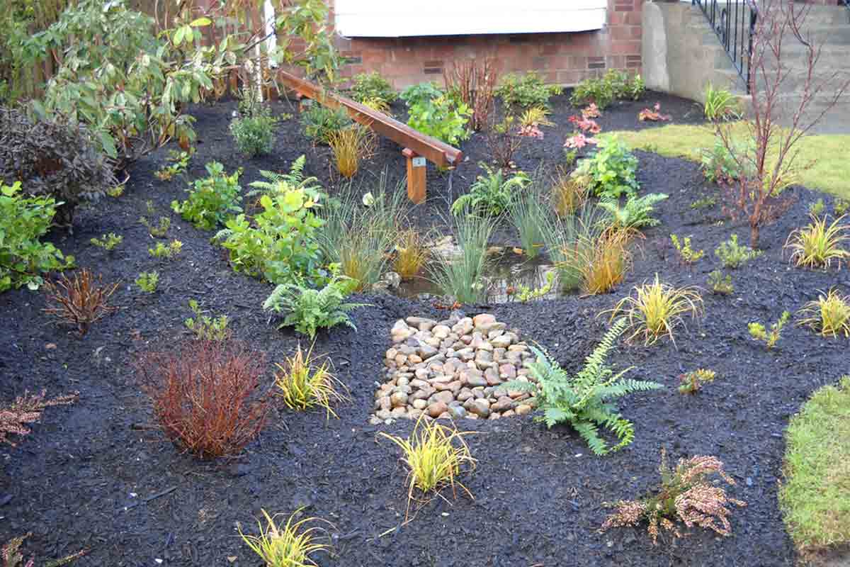 rain wise garden with plants, mulch, and rocks