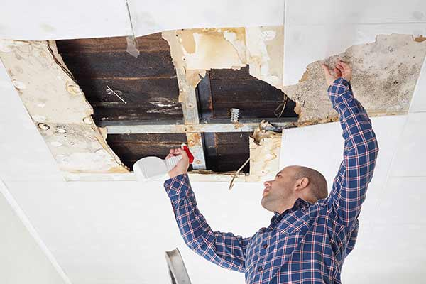 man cleaning mold-damaged ceiling