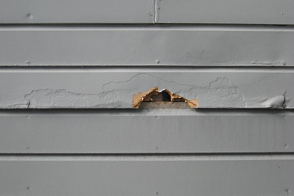 siding with one damaged piece