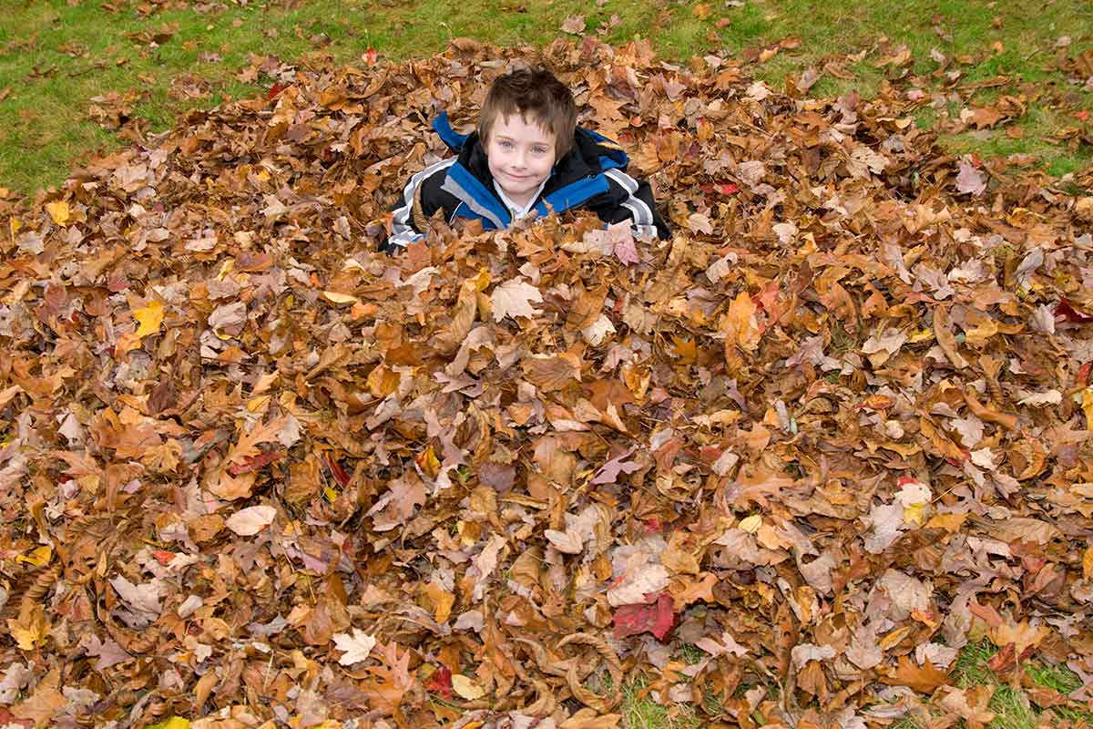 kid playing in leaf pile