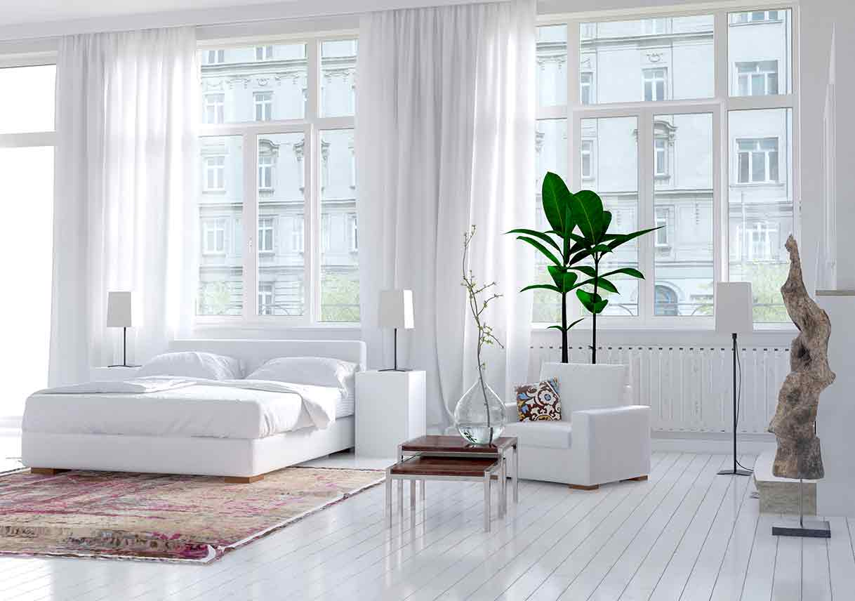 all white bedroom with large windows, a colorful rug, and decorative southwestern plants
