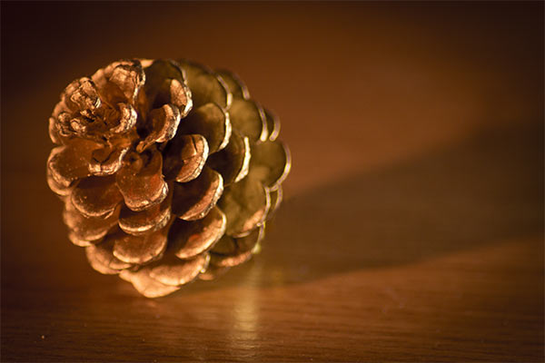 golden pinecone resting on a wooden table
