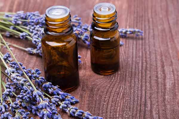 two essential oil bottles with lavender sprigs
