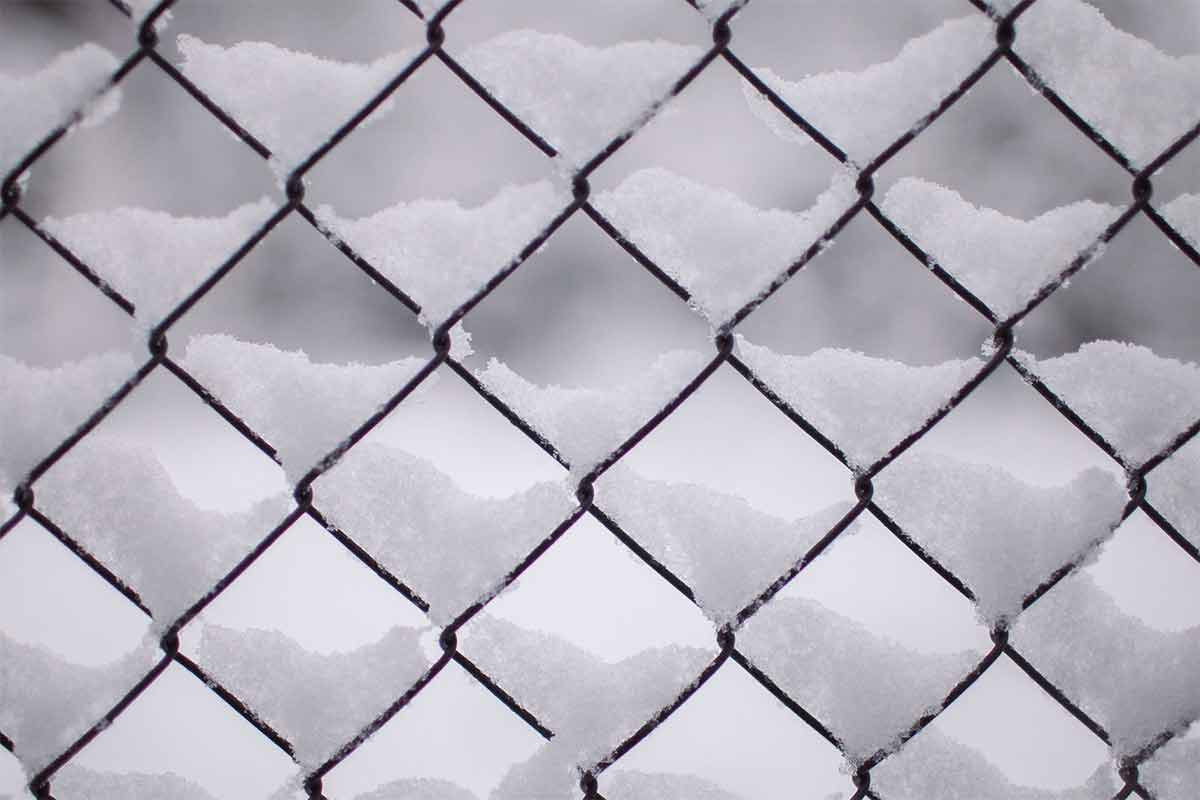 chainlink fence in snow