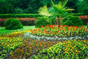 Garden Landscaping Design. Flower Bed, Green Trees And Bushes