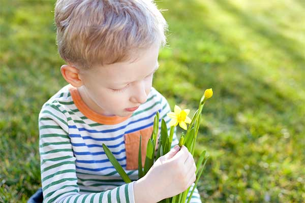 Little boy sitting on grass holding daffodil flowers