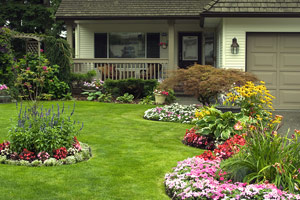 Manicured Home and Yard