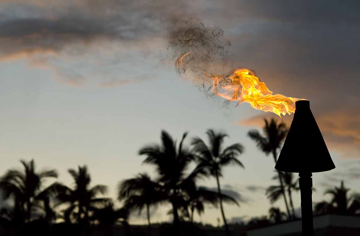 metal natural gas tiki torch with a tropical background
