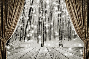 curtains on the background winter forest