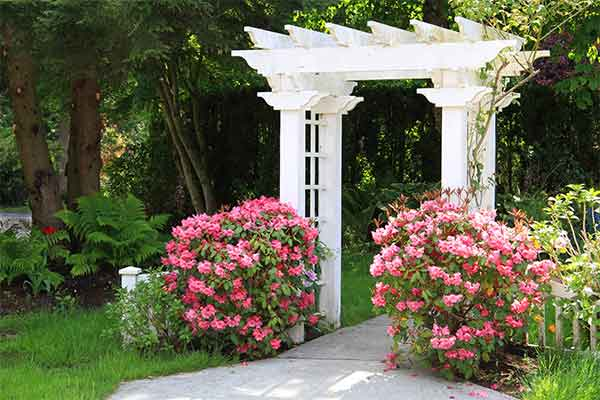 garden arbor with pink flowers
