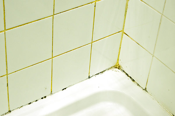 moldy tile and grout in shower