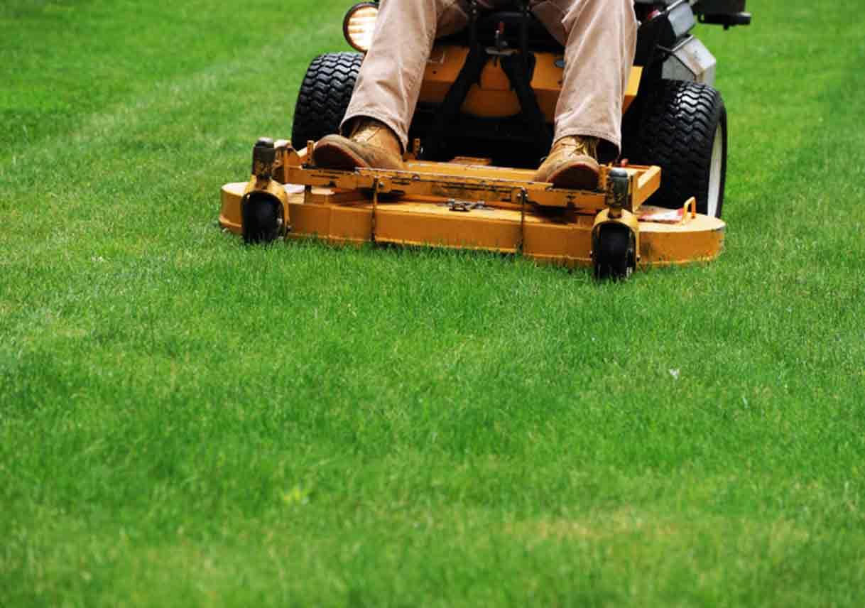 Grass Cutting Tips For A Healthier Happier Lawn Best