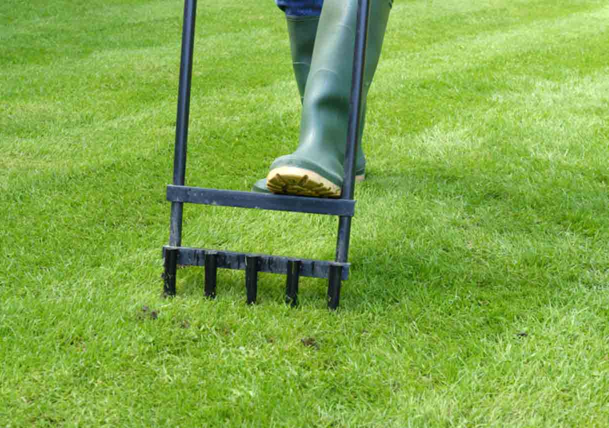 Lessons For Aerating Your Lawn In The Spring Best Pick