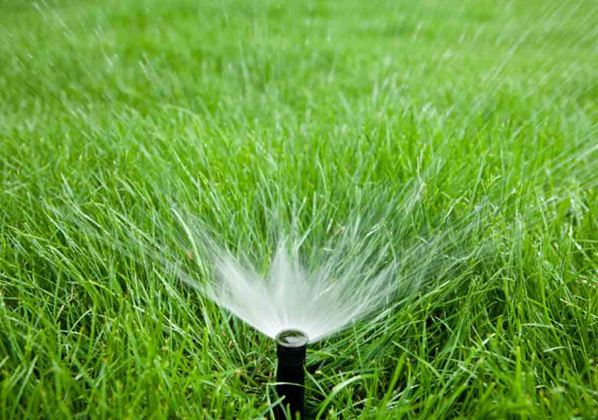 sprinkler in a grass field