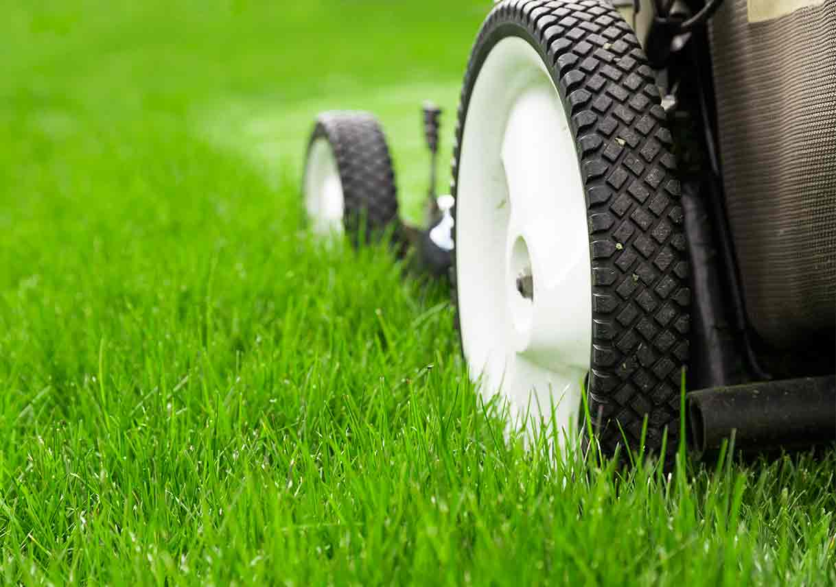 why hiring a lawn care service is worth it