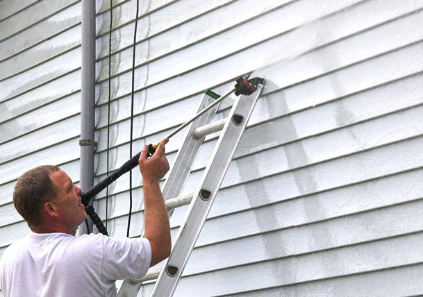 Clean Mold Off Your Houses Siding with these Tips Best Pick Reports