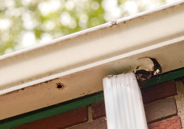 Repairing rust holes and leaks in your gutters best pick reports gutter problems repairing rust holes and leaks solutioingenieria Gallery