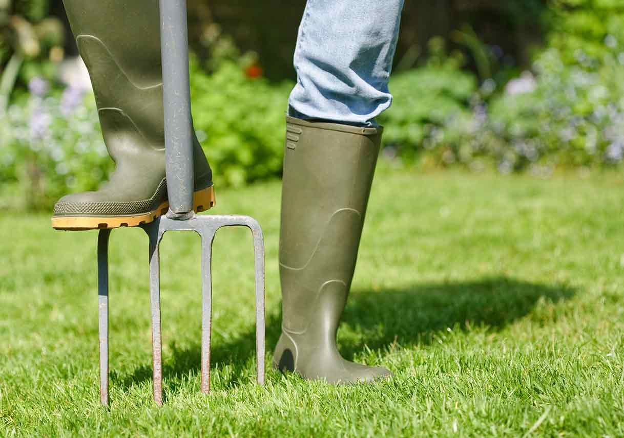 Lessons For Aerating Your Lawn Best Pick Reports